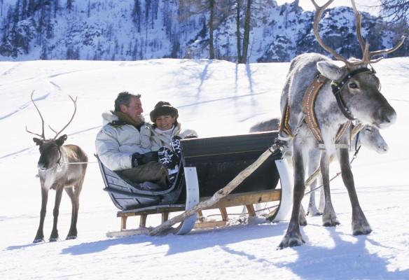 freizeit_winter_rentiere_006_m_gratton